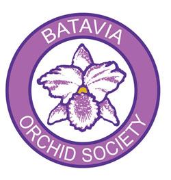 Batavia Orchid Society